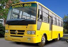 Stag School Bus 2